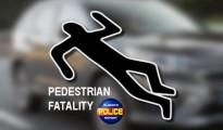 Pedestrian-Fatality-205x120